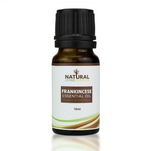 the different Types of Frankincense, the most well known and used Frankincense of the four we offer is our Frankincense Carterii essential oil. Besides its intoxicatingly smooth, and relaxing aroma, Frankincense Carterii has a knack for charming users with its many therapeutic properties. This oil is high in alpha-pinene, and other monoterpenes, making it a great immune support. Frankincense Carterii has many benefits towards the skin, such as reducing the appearance of mature skin and scars due to its ability to repair skin cells. The respiratory system can also benefit from Frankincense, as it aids illnesses and breathing. The aroma of Frankincense Carterii is what most people are familiar with, and is commonly used in making natural incense and resin burning. It has a deep, rich, grounding aroma which touts the ability to quiet the mind, support focus, and encourage tranquility