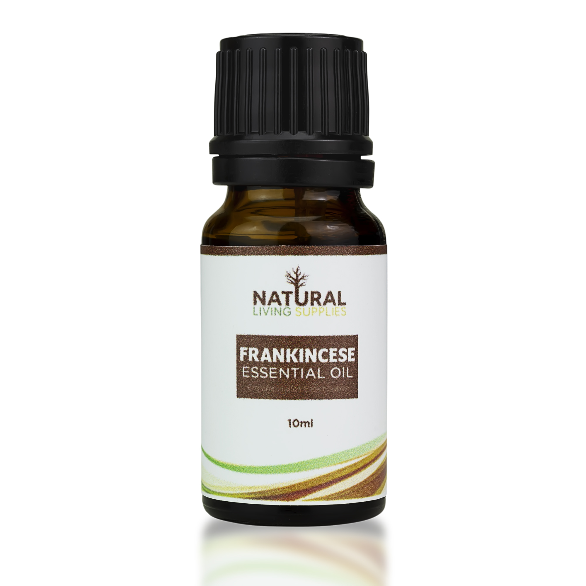 he most well known and used Frankincense of the four we offer is our Frankincense Carterii essential oil. Besides its intoxicatingly smooth, and relaxing aroma, Frankincense Carterii has a knack for charming users with its many therapeutic properties. This oil is high in alpha-pinene, and other monoterpenes, making it a great immune support. Frankincense Carterii has many benefits towards the skin, such as reducing the appearance of mature skin and scars due to its ability to repair skin cells. The respiratory system can also benefit from Frankincense, as it aids illnesses and breathing. The aroma of Frankincense Carterii is what most people are familiar with, and is commonly used in making natural incense and resin burning. It has a deep, rich, grounding aroma which touts the ability to quiet the mind, support focus, and encourage tranquility