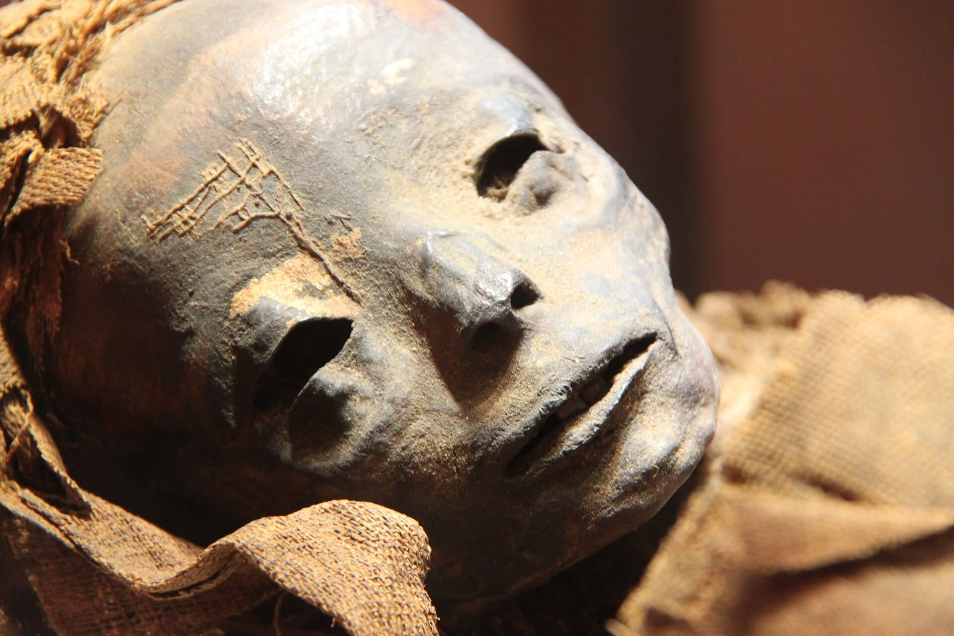 myrrh benefits Later, the ancient Egyptians began burying their dead in coffins to protect them from wild animals in the desert. However, they realised that bodies placed in coffins decayed when they were not exposed to the hot, dry sand of the desert.